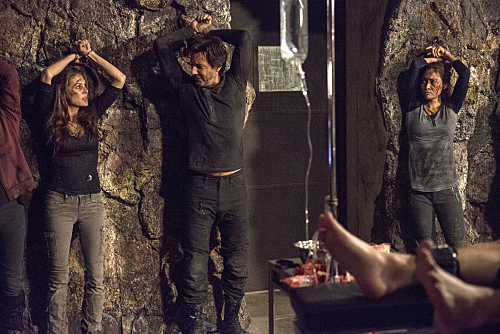The 100 TV Series - torture